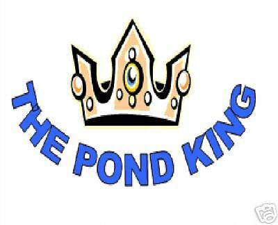 The Pond King